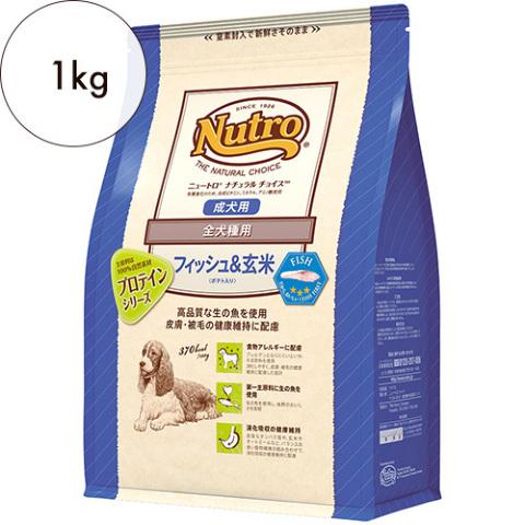 ニュートロ ナチュラルチョイス【全犬種用】成犬用 フィッシュ&ポテト 1kg