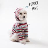 ルイスドッグ【louisdog】Funky Stripes Hat