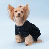 ルイスドッグ【louisdog】Beyond Denim Jacket