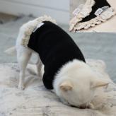 ルイスドッグ【louisdog】Cheeky Tee