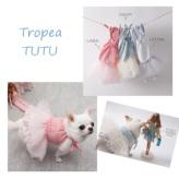 ルイスドッグ【louisdog】Tropea TUTU