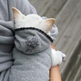 ルイスドッグ【louisdog】Ma Beauté Couture Grey