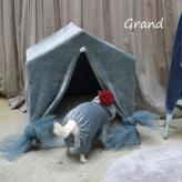 ルイスドッグ【louisdog】Peekaboo/Velour Grand-Deep Blue