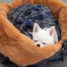 ルイスドッグ【louisdog】My Favorite Blanket