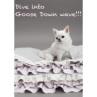 ルイスドッグ【louisdog】Goose Blancket/Egyption Cotton Melange Lavender