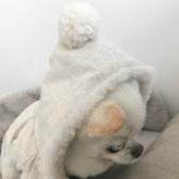 ルイスドッグ【louisdog】Super Classy Hood