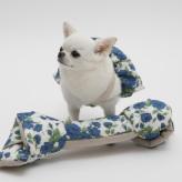 ルイスドッグ【louisdog】We Love Design/LIBERTY