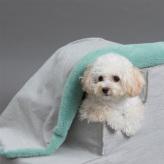 ルイスドッグ【louisdog】Winter Magic Blanket/Greengage Fur n Egyptian Cotton