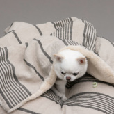 ルイスドッグ【louisdog】Stripes Linen Blanket