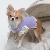 ルイスドッグ【louisdog】Waffle Frill Tee/Lavender Herb