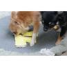 ルイスドッグ【louisdog】FUN Waffle Toy/M-FUN