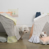 ルイスドッグ【louisdog】BOHO Peekaboo/BOHO Peekaboo/Natural/Petit