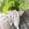 ルイスドッグ【louisdog】Floral Lace Tank Top