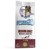 フォルツァ10 ミディアムメンテナンス ラム&ライス 15kg